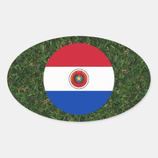 Bandera de Paraguay en hierba Pegatina Ovalada