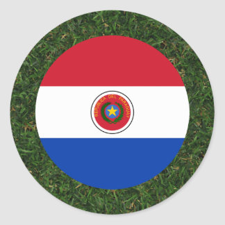 Bandera de Paraguay en hierba Pegatina Redonda