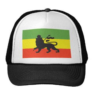 Bandera de Rastafarian Gorro