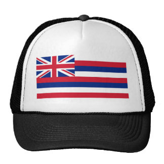 Bandera del estado de Hawaii Gorros