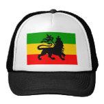 Bandera del león gorras de camionero