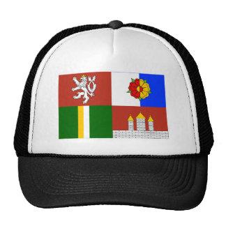 Bandera del sur de Bohemia Gorra