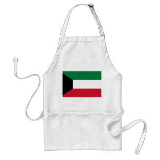 Bandera nacional del mundo de Kuwait Delantal