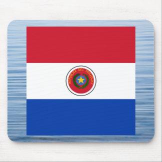 Bandera paraguaya que flota en el agua alfombrilla de ratón