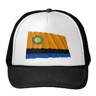 Bandera que agita de Cojedes Gorras De Camionero