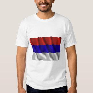 Bandera que agita de Misiones Camisas