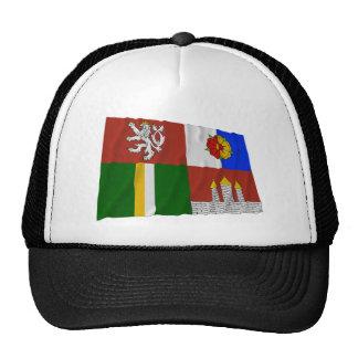 Bandera que agita del sur de Bohemia Gorros