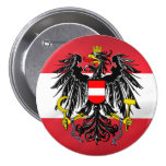 Bandera y escudo de armas austríacos pin