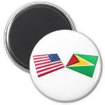 Banderas de los E.E.U.U. y de Guyana Imanes