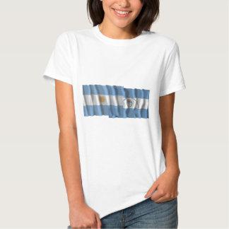 Banderas que agitan de la Argentina y de Camisetas