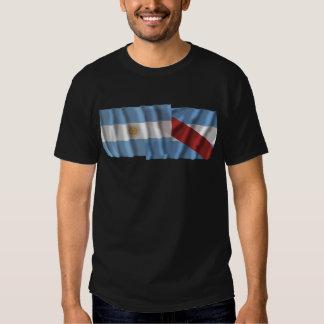 Banderas que agitan de la Argentina y de Entre Camisetas