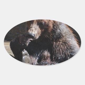 Baño del oso colcomanias de ovaladas