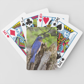Baraja De Cartas Bicycle Bluebird