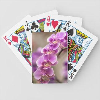 Baraja De Cartas Bicycle Cadena de flor de color rosa oscuro de la orquídea