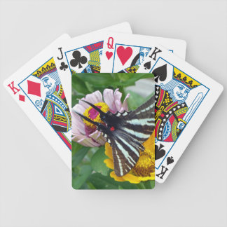 Baraja De Cartas Bicycle Cebra Swallowtail+Escarabajo japonés