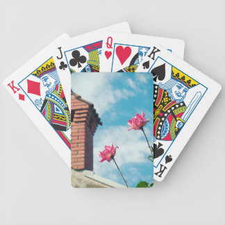 Baraja De Cartas Bicycle Chimenea y rosas salvajes