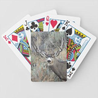 Baraja De Cartas Bicycle Dólar del ciervo mula de Utah