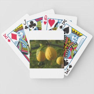 Baraja De Cartas Bicycle Limones amarillos que crecen en el árbol en la