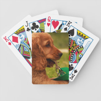 Baraja De Cartas Bicycle Perrito