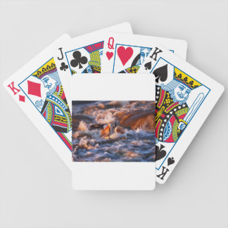Baraja De Cartas Bicycle Trago