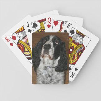 Baraja De Cartas Foto del perro del perro de aguas de saltador