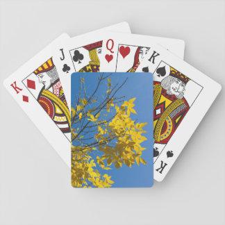 Baraja De Cartas Hojas del amarillo en la foto del árbol de la