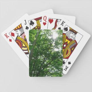 Baraja De Cartas Mirada para arriba a los árboles del verano