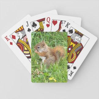 Baraja De Cartas Naipes, tema de la ardilla roja
