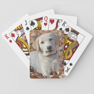 Baraja De Cartas Perrito amarillo del labrador retriever