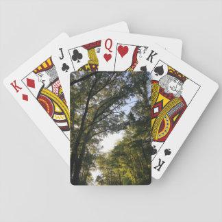 Baraja De Cartas un rastro de árboles - bosque y cielo