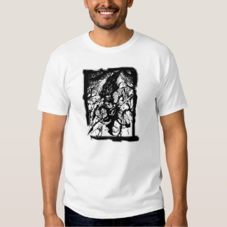 Bárbaro Camisas