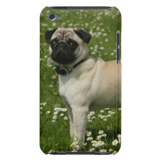 Barro amasado que juega en flores iPod Case-Mate fundas