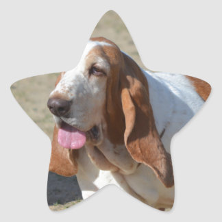 Basset Hound grande Pegatina En Forma De Estrella