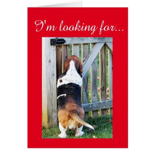 Basset Hound lindo que busca para una tarjeta del