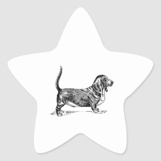 Basset Hound Pegatina En Forma De Estrella