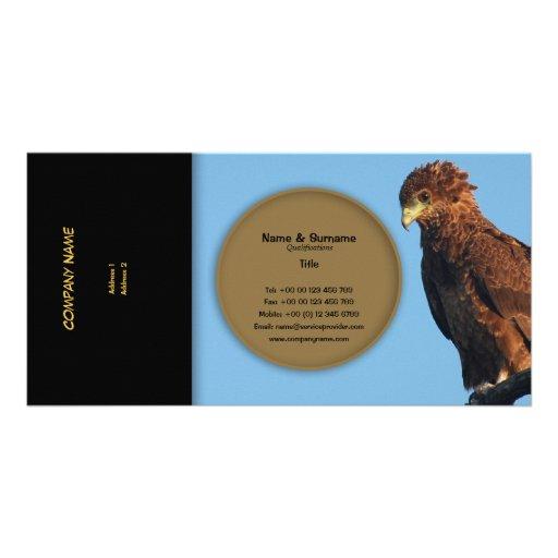 Bateleur de las águilas de los rapaces del perfil  tarjetas fotograficas personalizadas