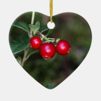 Bayas de un lingonberry salvaje (Vaccinium Adorno De Cerámica