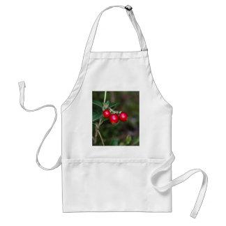 Bayas de un lingonberry salvaje (Vaccinium Delantal