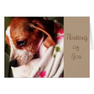 Beagle del bebé tarjeta de felicitación