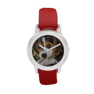 Beagle del perro de perrito reloj