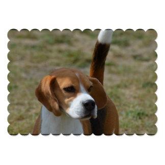 Beagle dulce estupendo invitación 12,7 x 17,8 cm