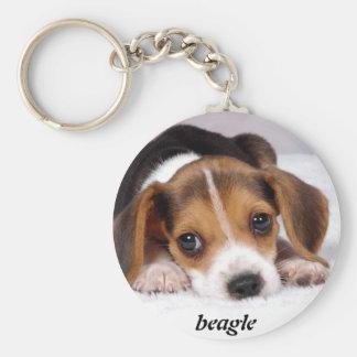 beagle-puppies-wallpaper-11.jpg, beagle llavero redondo tipo chapa