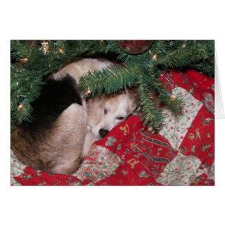 Beagle soñoliento del navidad tarjeta de felicitación