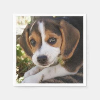 Beagles del perrito servilleta de papel