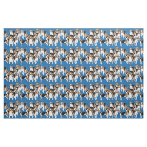 Beagles en tela azul