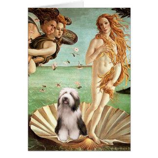 Beardie 1 - Nacimiento de Venus Tarjeta