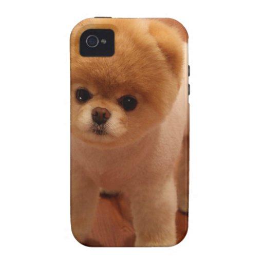 Bebé adorable del perrito del mascota del perro de iPhone 4 funda