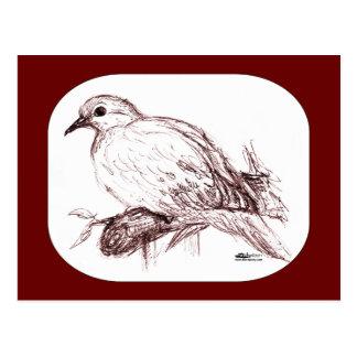 Bebé de luto de la paloma postal