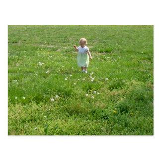 Bebé en postales del campo