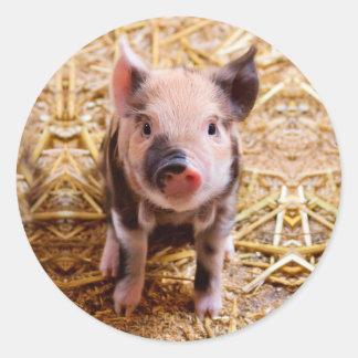 Bebés lindos de los animales del campo del pegatina redonda